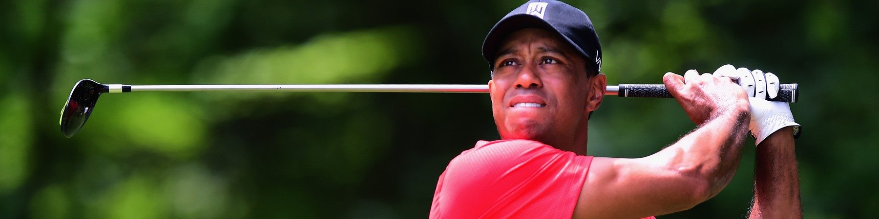 Tiger Woods Blog Image